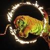 Цирки в Калтане